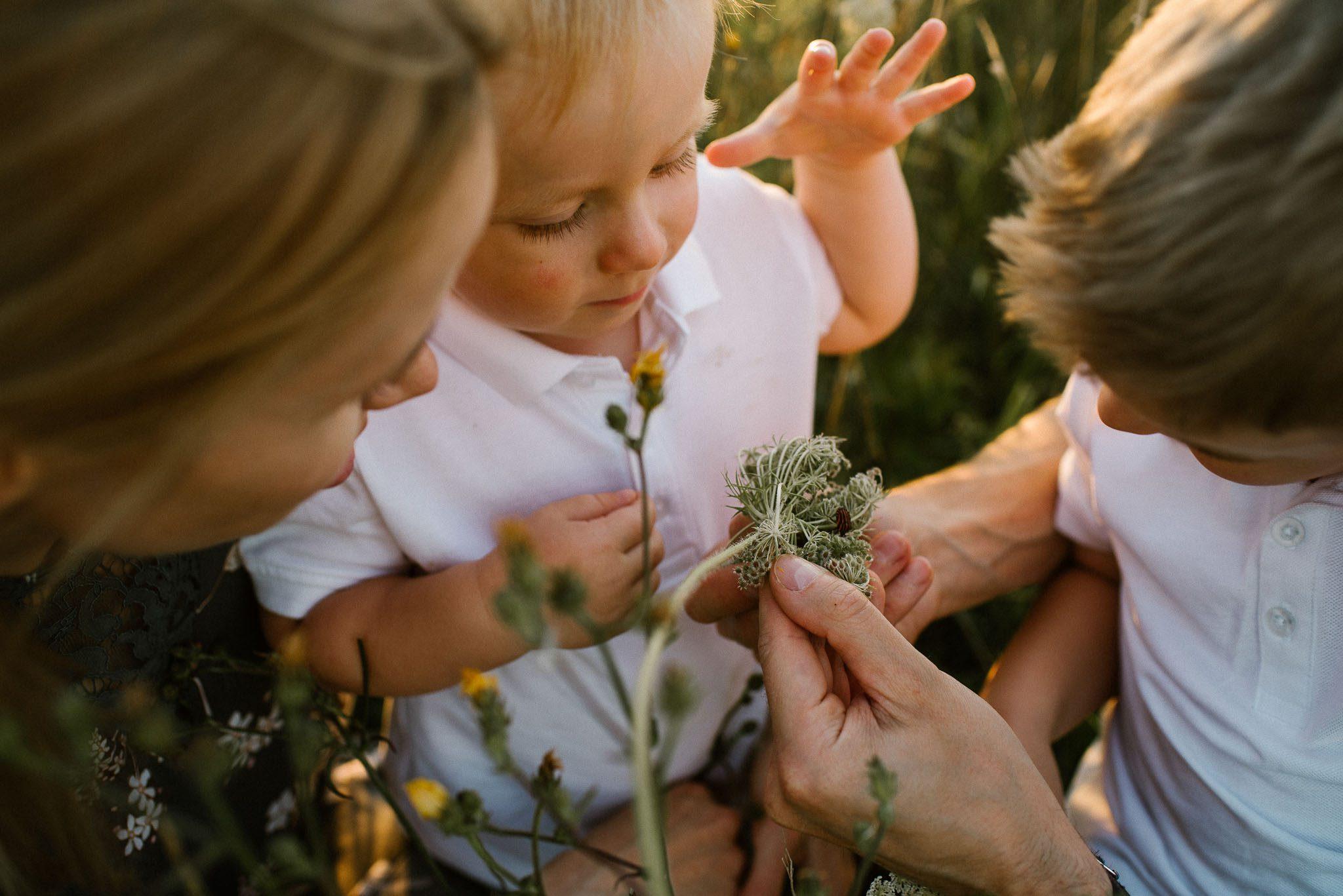 Chłopcy z mamą wąchają kwiaty na łące - sesja rodzinna w plenerze na łące w Poznaniu