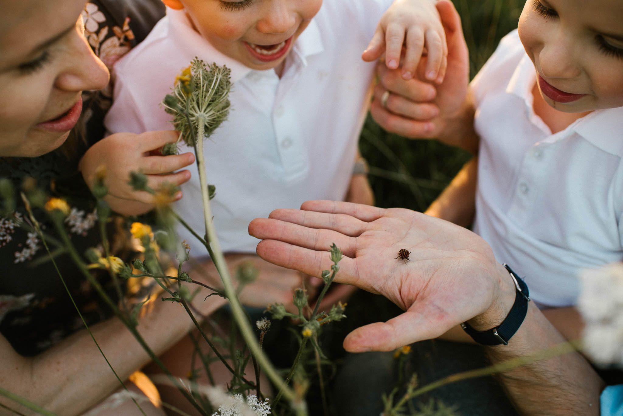 Tata pokazuje synom robaczka - sesja rodzinna w plenerze na łące w Poznaniu